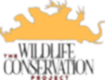 TWCP_Logo2.png