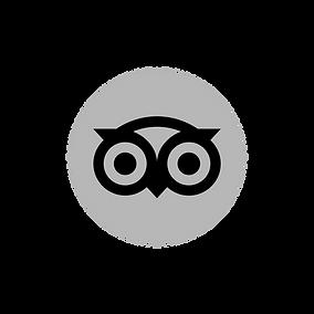 Tripadvisor_icon_logo_edited.png