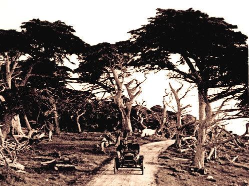 17 Mile Drive circa 1910