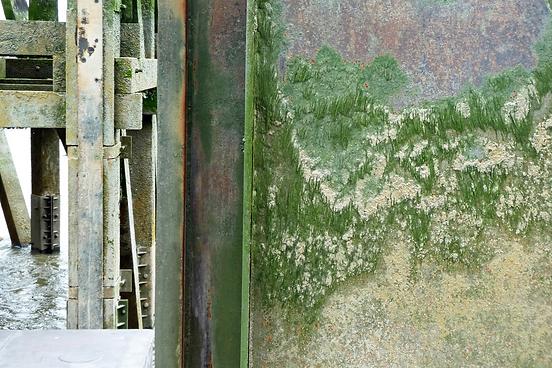 groen.png