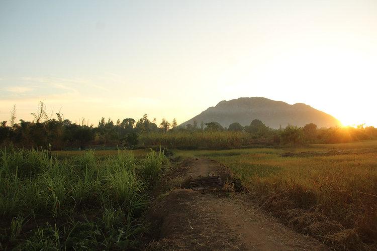 Ulemu 54 Malawi sunrise.jpg