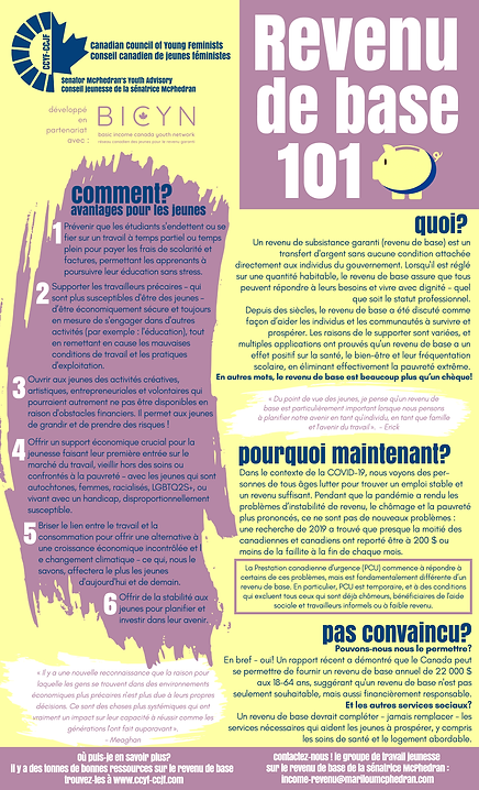 BasicIncome_OnePager_FR_Final.png