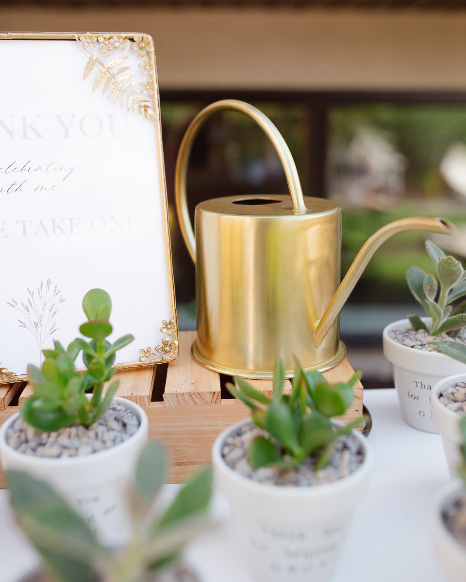 A gold watering can sitting on a vintage white dresser beside some small white pots of succulents.