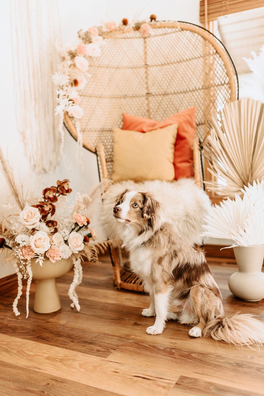 A fluffy brown dog sits on the hardwood floor infront of a boho wicker chair decorated with florals at a boho baby shower.