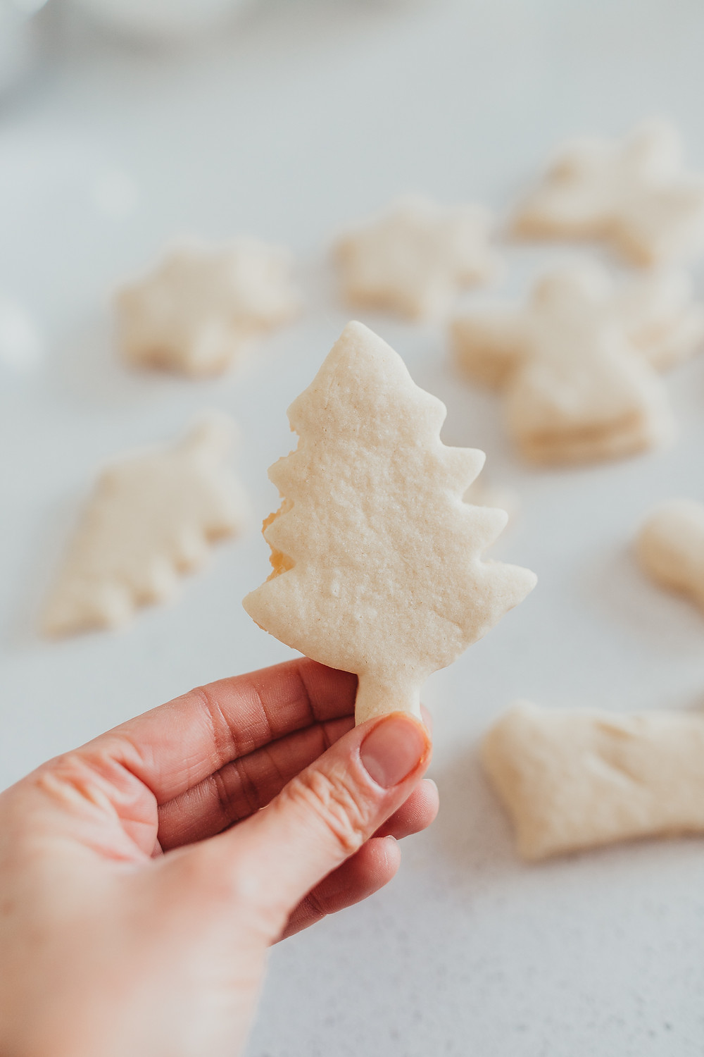 A woman's hand holding up a fresh baked sugar cookie in the shape of a tree.
