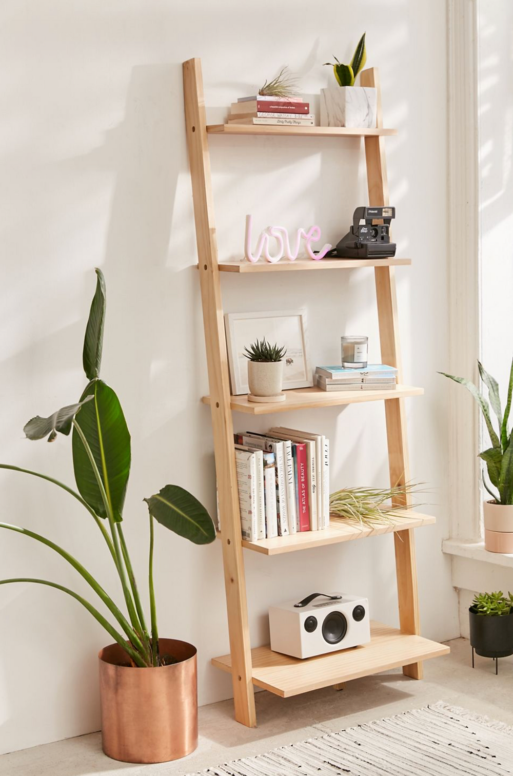 A ladder bookshelf leaning against a white wall styled with books, plants and decorative accessories.