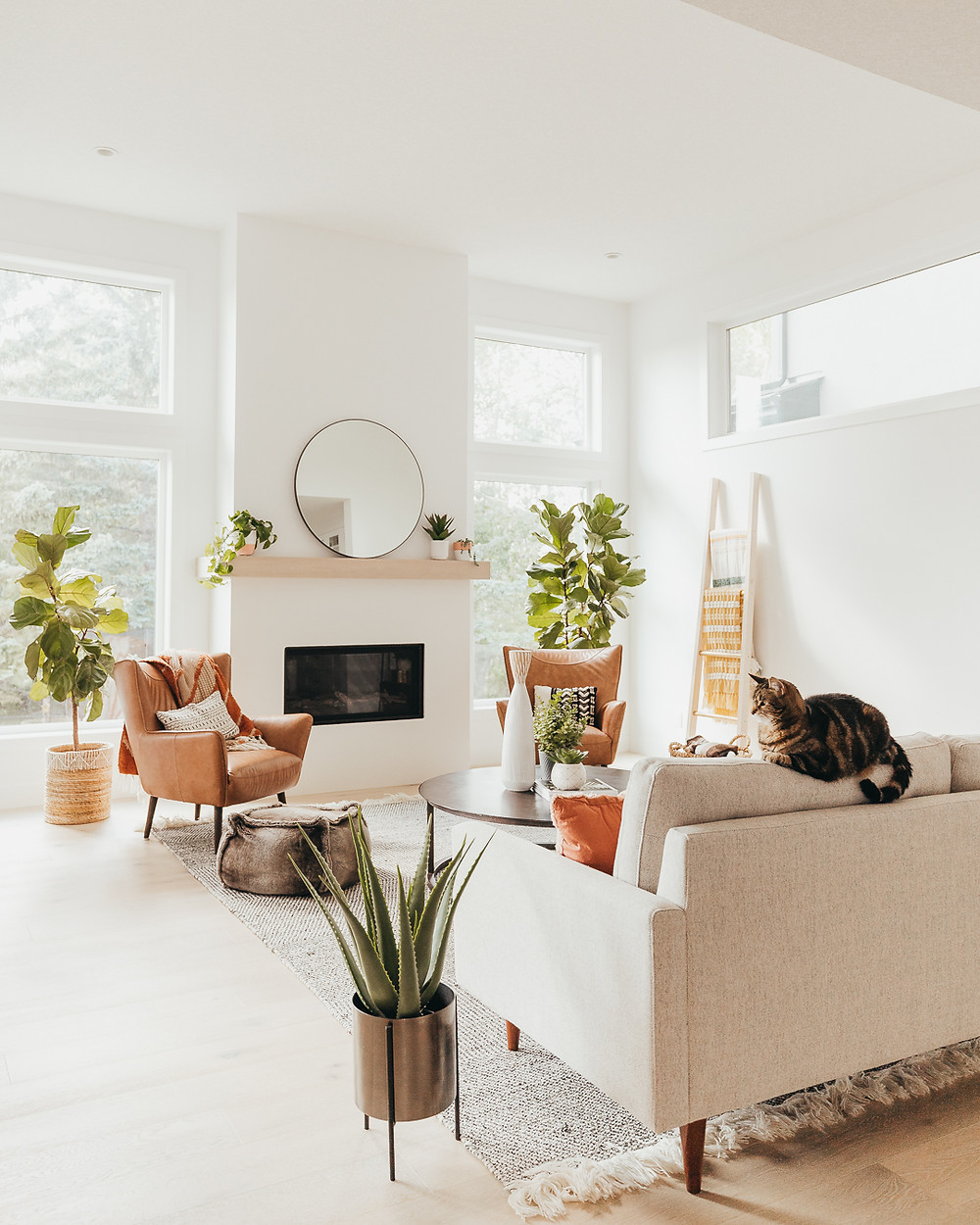 Natural light and windows blanket ladder against the wall with throw wood mantle with round mirror and plants fiddle leaf fig in baskets cream sofa with cat on the back two brown leather armchairs aloe plant in gold pot on floor