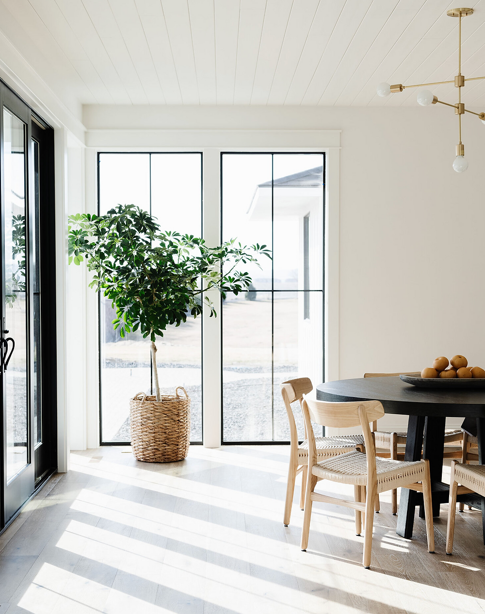 A modern dining room with large black windows, a tall plant in a basket and a mid century style dining table and chairs.