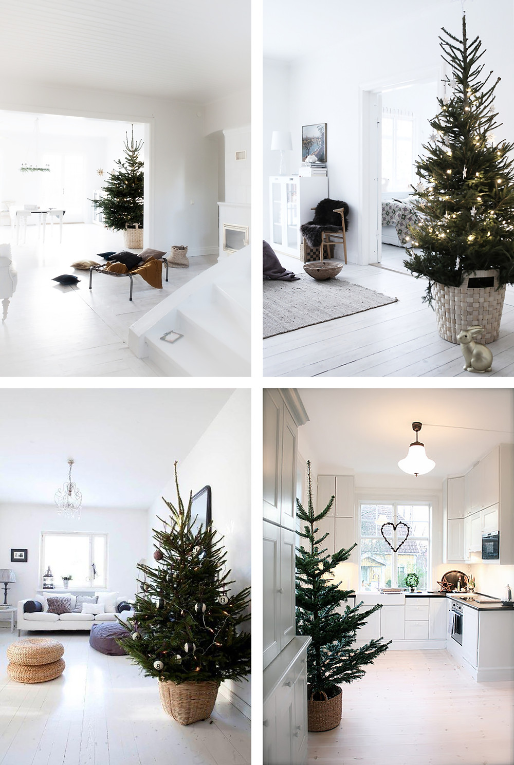 A Christmas tree sitting in a wicker basket in a white living room for the Christmas holidays is decorated in a Scandinavian nordic style.