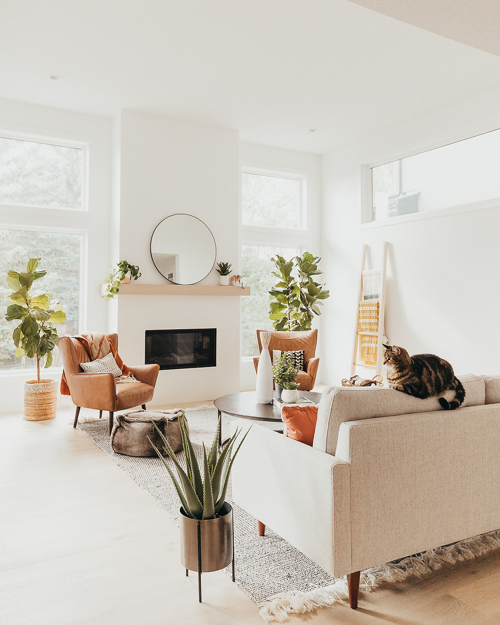 A white Scandinavian living room features light oak wood floors with a wool rug, light coloured sofa with a brown cat on it, brown fur pouf, two brown leather chairs with pillows, two fiddle leaf fig plants in front of large windows, a metal round coffee table, a wicker basket holding a throw, and a linear fireplace with a light wood mantel holding a round mirror and some plants.