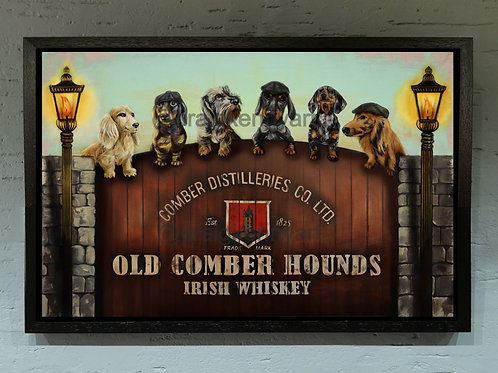 Old Hounds Of Comber