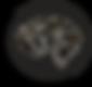 Logo Antitorheit.png