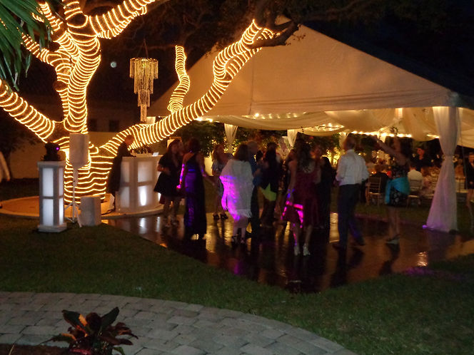 Wedding Dancing, DJ Services, Florida, Brett Brisbois Events
