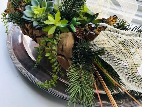 Sumptuous Succulents