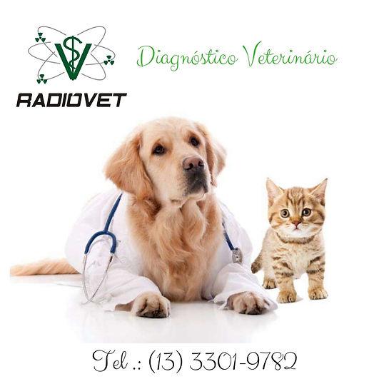 Diagnóstico Veterinário (1).jpg