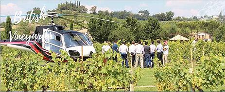 ZK British Vineyards.jpg