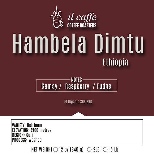 Hambela Dimtu Ethiopia