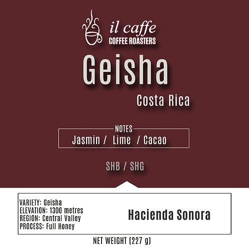 Hacienda Sonora Geisha