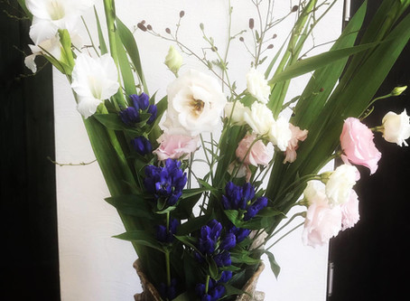 今週のお花たちです