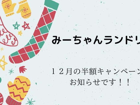 愛媛県松山市のコインランドリー「みーちゃんランドリー」12月の半額キャンペーンのお知らせです!!