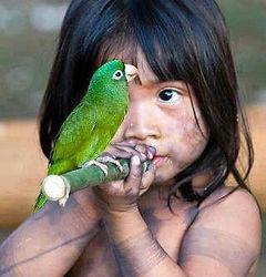 Amazonas 10.jpeg
