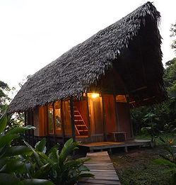 Amazonas 08.jpeg