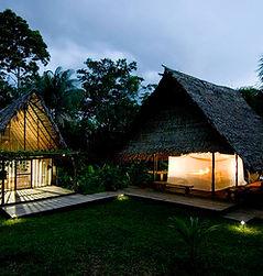 Amazonas 03.jpg