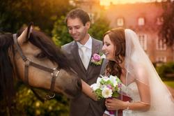 Kasteel Henkenshage Sint-Oedenrode Bruidsreportage (84 of 121)