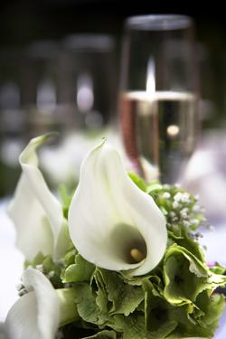 Kasteel Henkenshage Sint-Oedenrode Bruidsreportage (72 of 121)