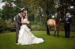 Kasteel Henkenshage Sint-Oedenrode Bruidsreportage (77 of 121)