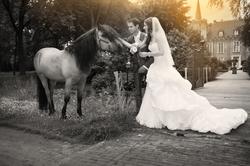 Kasteel Henkenshage Sint-Oedenrode Bruidsreportage (85 of 121)