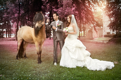 Kasteel Henkenshage Sint-Oedenrode Bruidsreportage (89 of 121)
