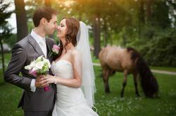 Kasteel Henkenshage Sint-Oedenrode Bruidsreportage (82 of 121)