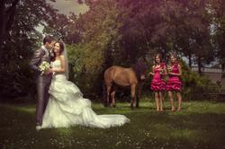 Kasteel Henkenshage Sint-Oedenrode Bruidsreportage (88 of 121)