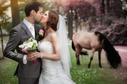 Kasteel Henkenshage Sint-Oedenrode Bruidsreportage (83 of 121)