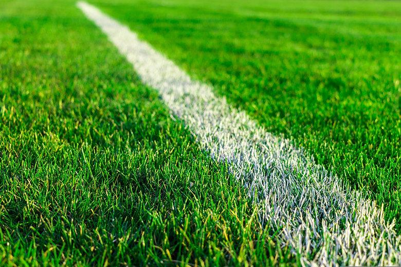 Green field grass on sport stadium - sto