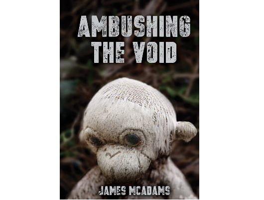 "Book cover for ""Ambushing the Void"" by James McAdams displays a creepy, ratty plush monkey."