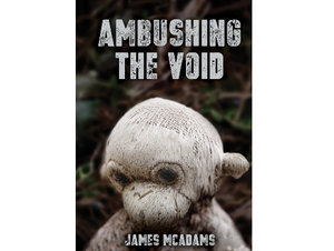 """Book cover for """"Ambushing the Void"""" by James McAdams displays a creepy, ratty plush monkey."""