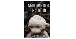 "Review of ""Ambushing the Void"""