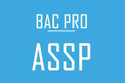 bac pro assp.jpg