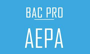 bac pro AEPA (spvl).jpg