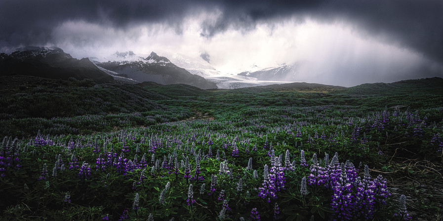 A Glaciers Frontyard