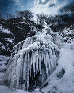 frozen6.jpg