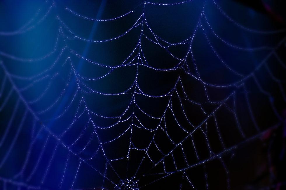 web 2 blue