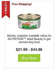 dog food4.png