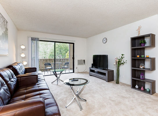 Fully Furnised Apartment UCI