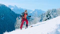 Alpine 2.jpeg