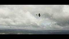 Breitling 12.jpeg