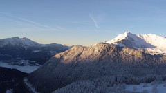 Alpine 7.jpeg