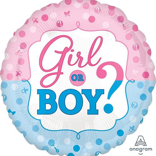 "Girl or Boy 17"""